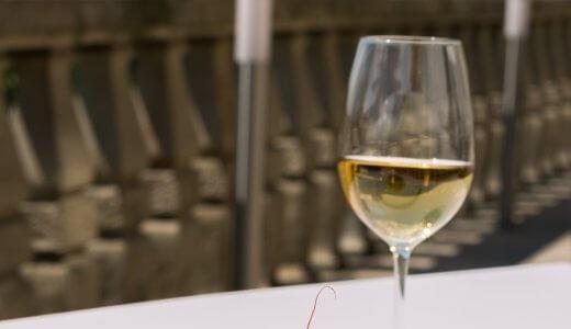 ロブマイヤートラベラーは高すぎる!代わりになるワイングラスは?