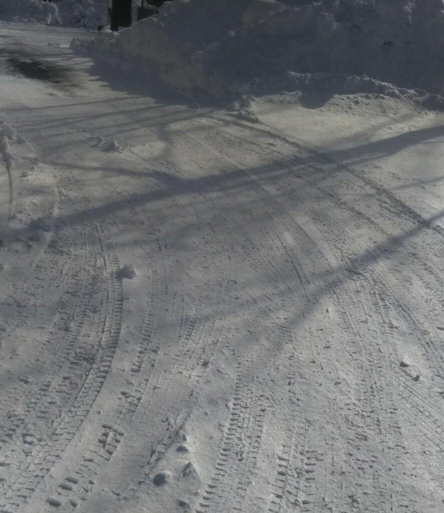 キツネ村周辺の道路(冬)