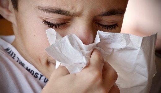 【2019】今年の花粉はいつから?飛散量は去年の5倍!?シーズン前に事前対策!